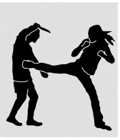 self-défense 2